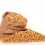 女性の美と健康に欠かせない大豆イソフラボン